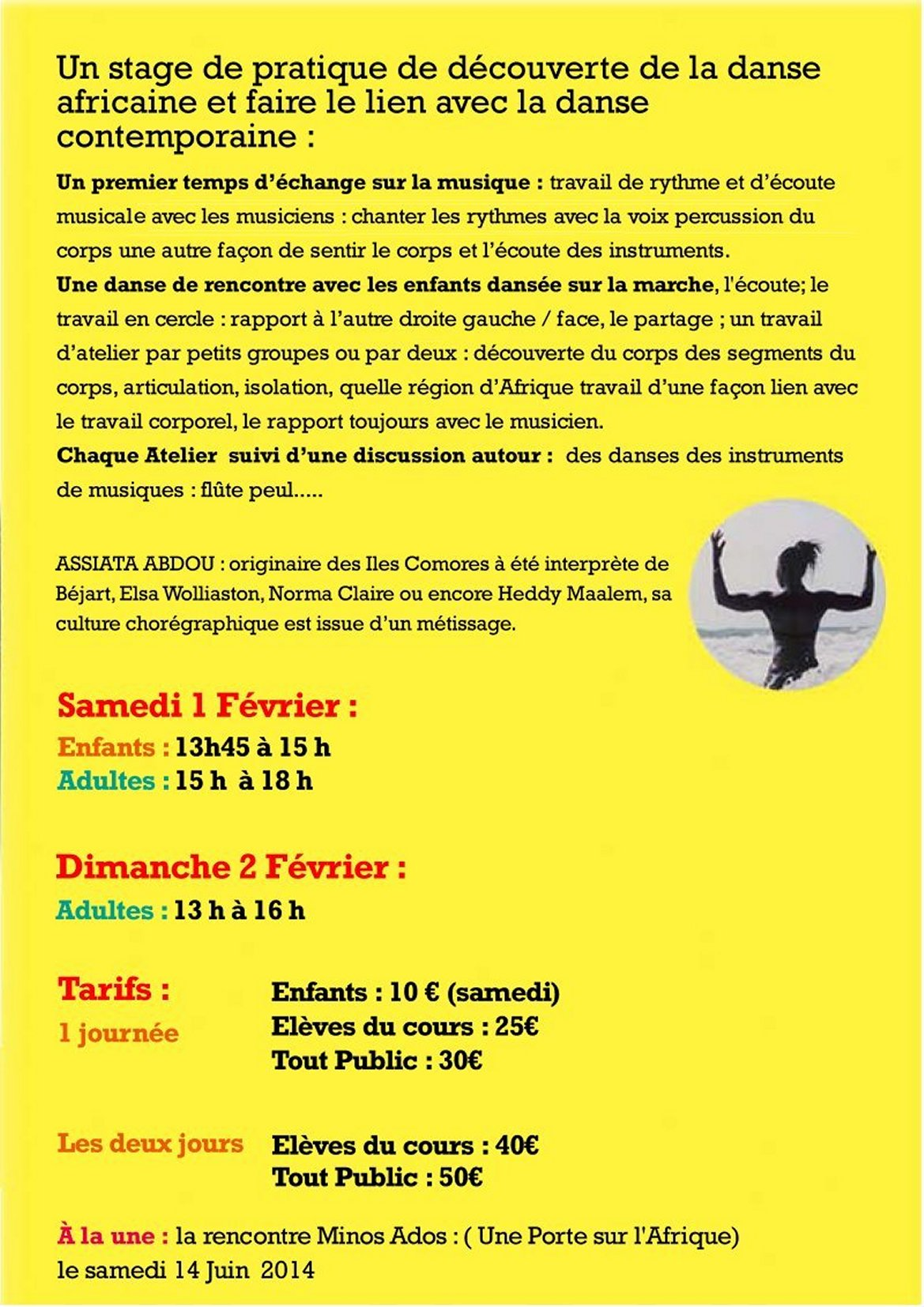 stages danse expression africaine jan14 2
